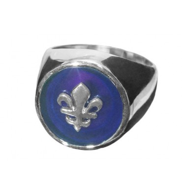 Amethyst Fleur De Lys Sterling Silver Stone Family Crest Ring